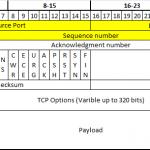 TCP Headers