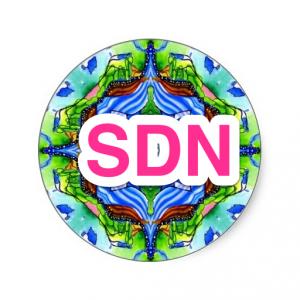 sdn-nirvana