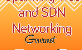sdn-and-spanning-tree-ppp-show-logo