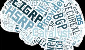 WordCloudBrain-opt