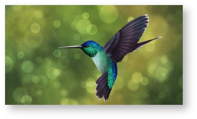 ONOS Hummingbird Release (Image Source: ONOS)