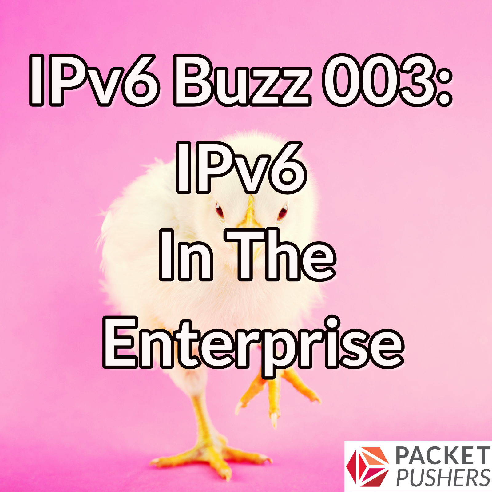 IPv6 In The Enterprise