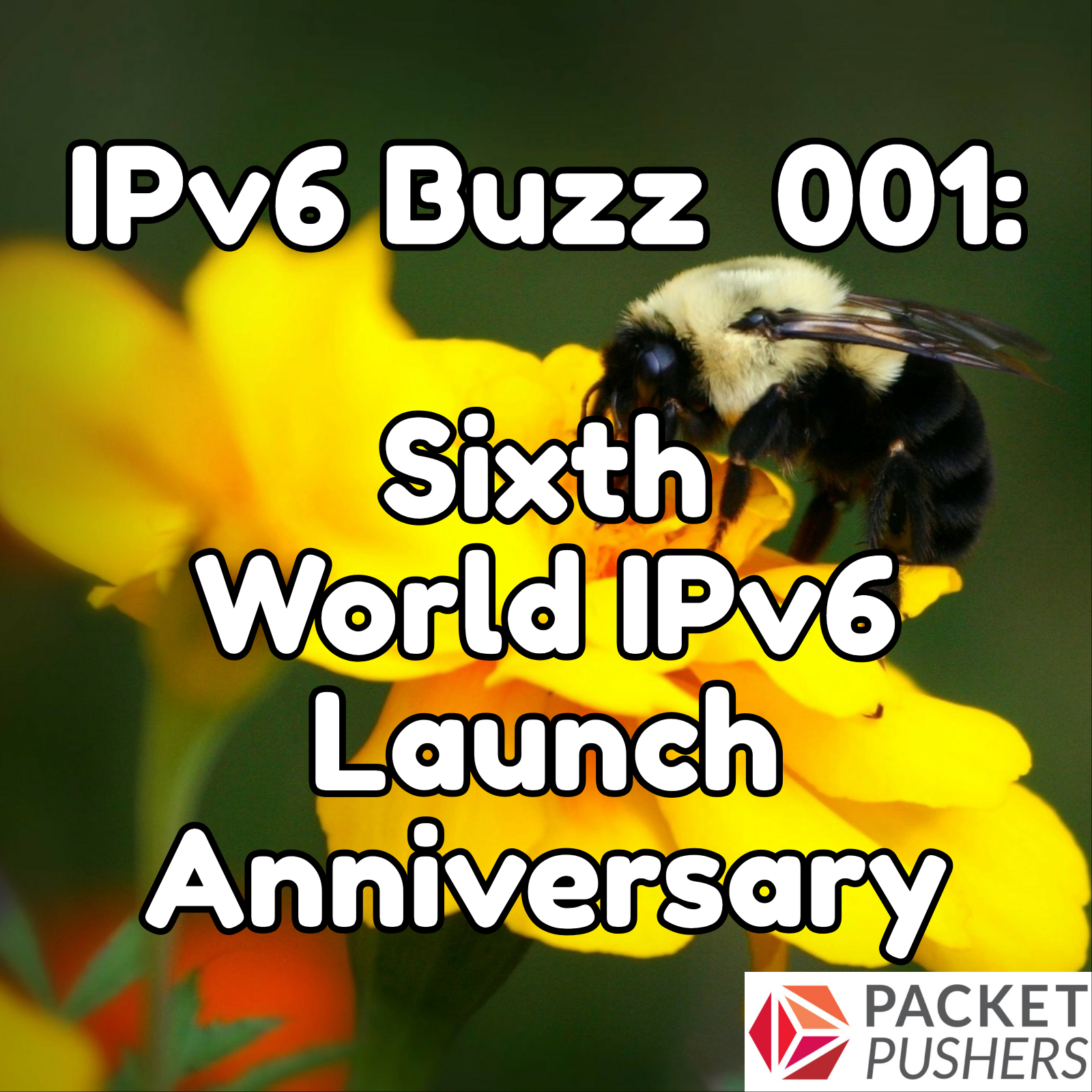 Sixth World IPv6 Launch Anniversary