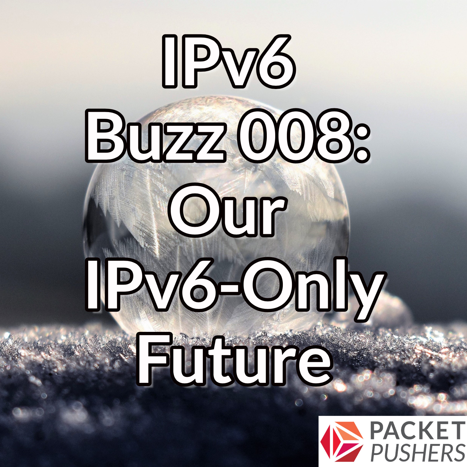 IPv6 only future