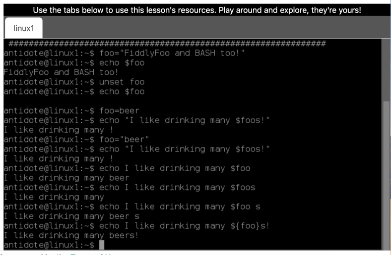 Having A Bash (Lesson) With NRE Labs